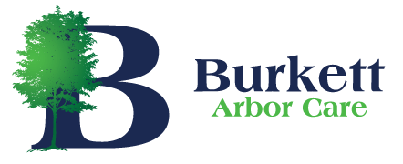 Burkett Arbor Care logo